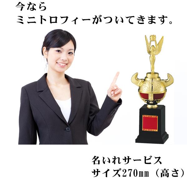 画像5: オリジナルチャンピオンベルト:ボクシング・プロレス・空手・格闘技・の大会に使用可能なチャンピオンベルト
