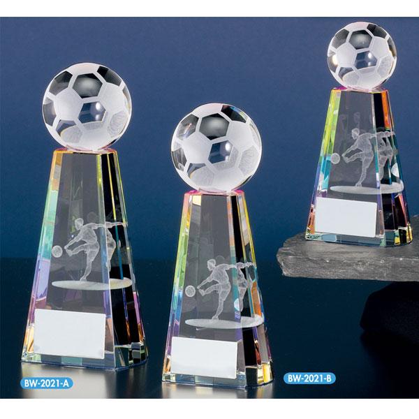 サッカー用ブロンズBW2021画像
