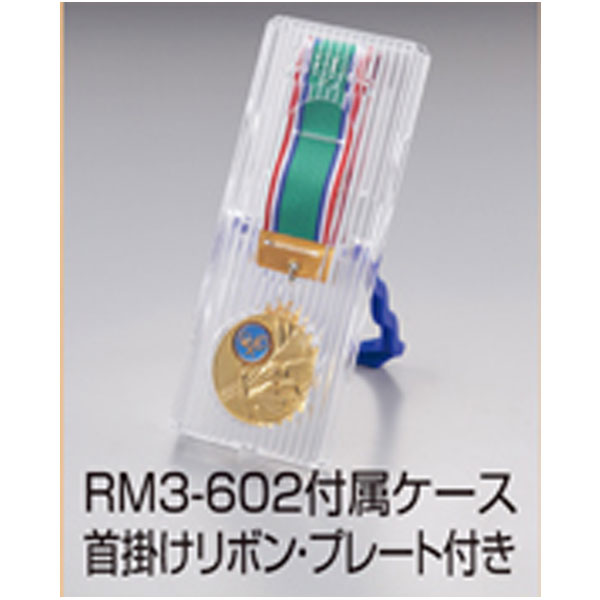 RM3-602img2