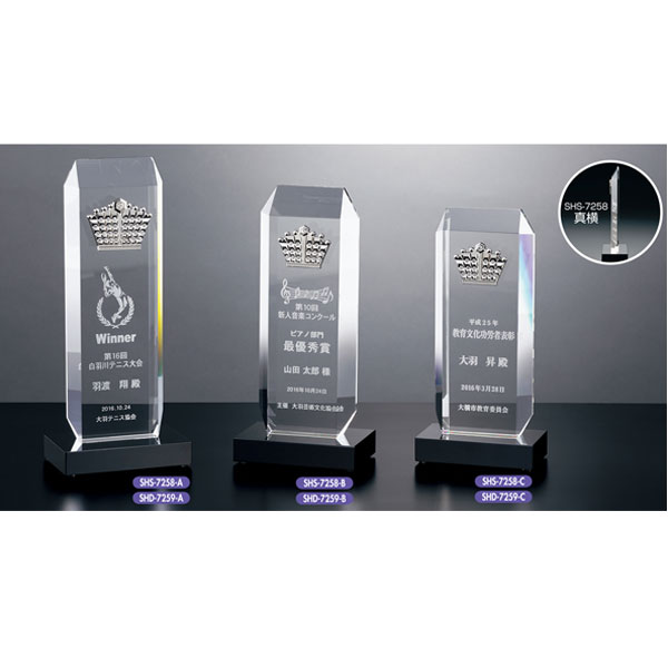 画像1: 2Dレーザー加工 SHS7259:コンテスト・認定書・周年記念・表彰用品にオススメ 2D加工表彰楯