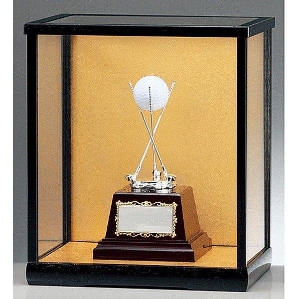 画像2: BT2079(ガラスケース入り):ホールインワンの記念ボールを飾れる お祝い用の記念品 ホールインワントロフィー