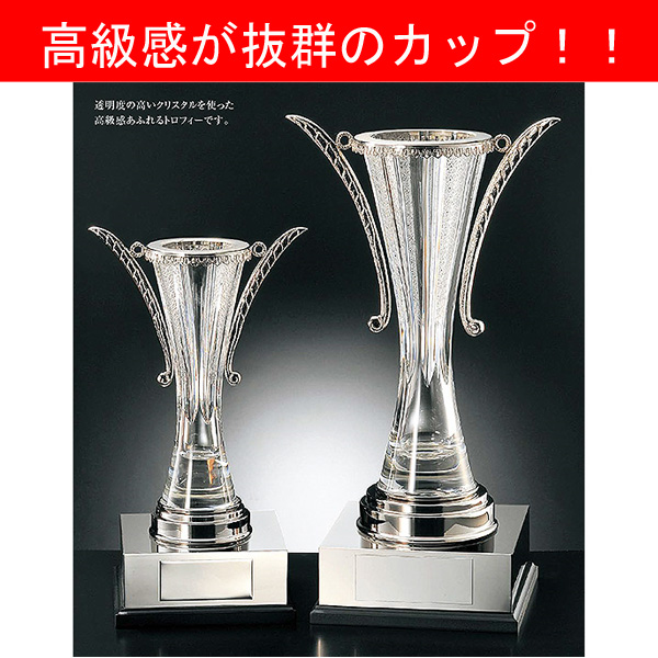 画像1: KC1512 クリスタルカップ社内表彰・企業表彰・永年勤続表彰・大会用に。高級感あるガラス製トロフィー・クリスタルトロフィー
