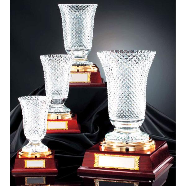 クリスタルカップVC1001イメージ1