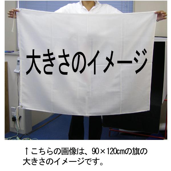 ナウル国旗画像2